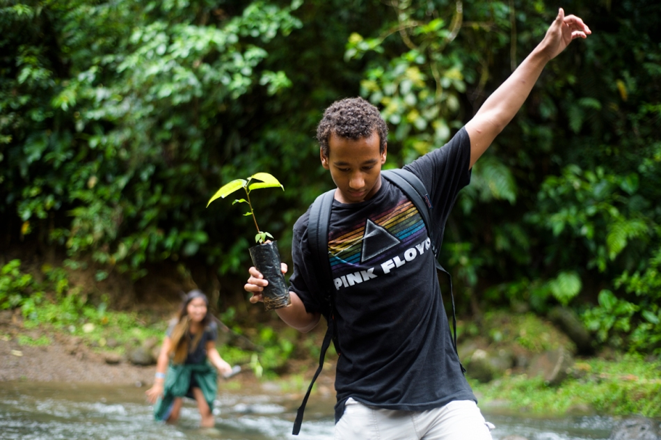 Brandon crosses a river with a young tree so it can be planted. The group planted fruit trees to attract more birds and other animals to the area.